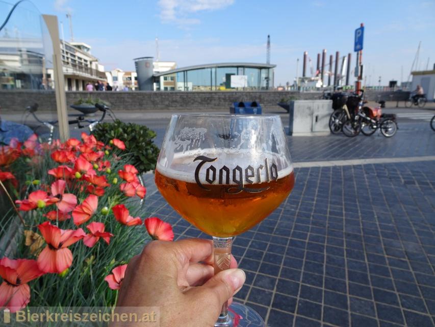 Foto eines Bieres der Marke Tongerlo Blond aus der Brauerei Haacht Brewery plc