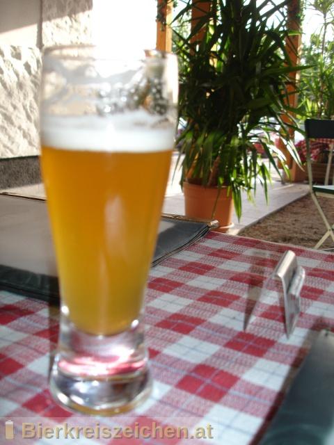 Foto eines Bieres der Marke Raggei-Dinkel aus der Brauerei Raggei-Bräu