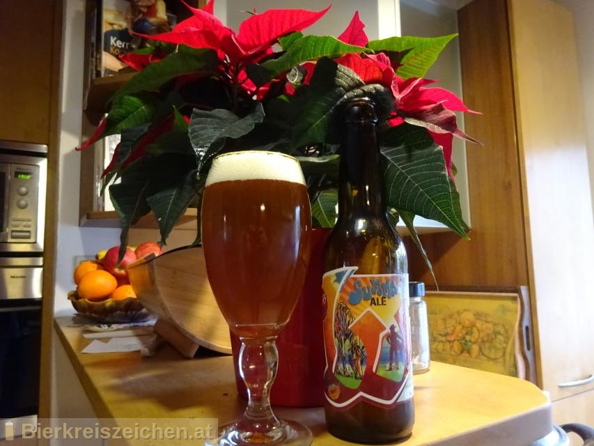 Foto eines Bieres der Marke Wimitz Spezial Summa Ale aus der Brauerei Wimitzbräu