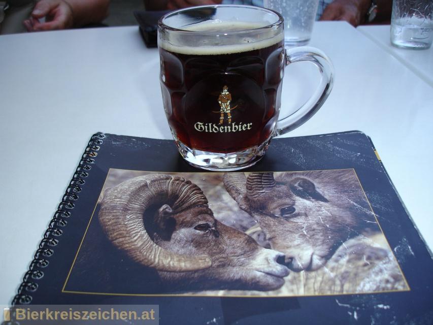 Foto eines Bieres der Marke Gildenbier aus der Brauerei Haacht Brewery plc