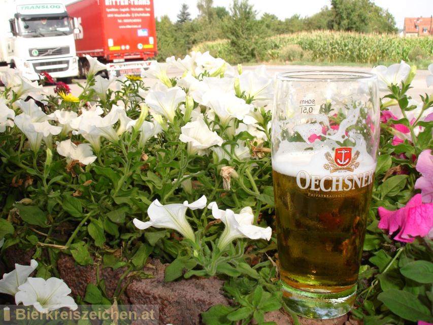 Foto eines Bieres der Marke Oechsner Edelhell aus der Brauerei Privatbrauerei Oechsner GmbH & Co. KG