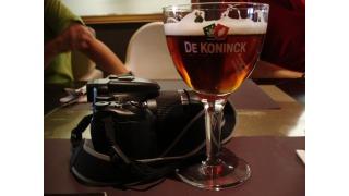 Bild von De Koninck