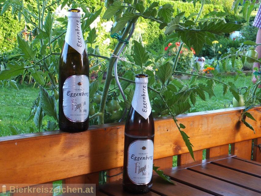 Foto eines Bieres der Marke Schloss Eggenberg - Hopfenkönig aus der Brauerei Brauerei Schloss Eggenberg