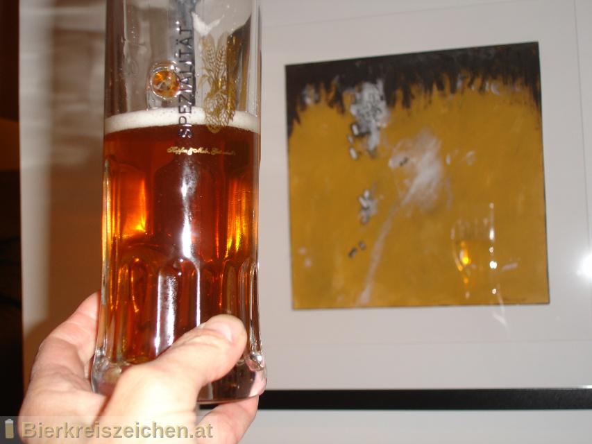 Foto eines Bieres der Marke Limited Edition Maroni aus der Brauerei Hofbräu Kaltenhausen
