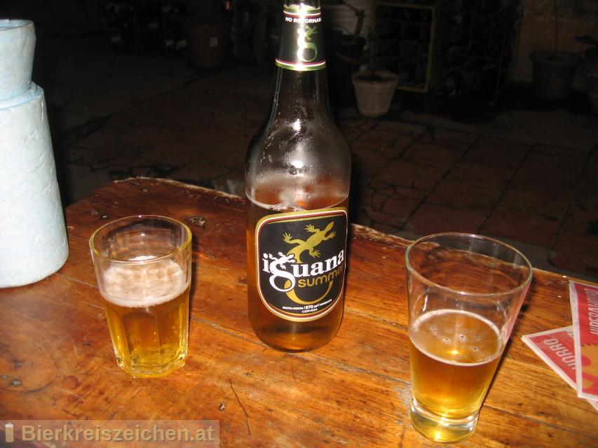 Foto eines Bieres der Marke Iguana Summer aus der Brauerei Cervecería y Maltería Quilmes