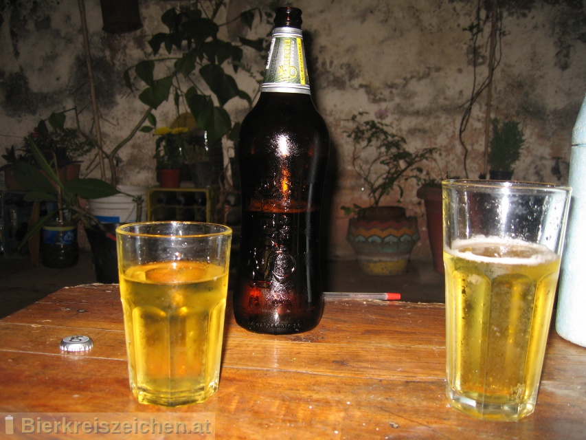Foto eines Bieres der Marke Iguana aus der Brauerei Cervecería y Maltería Quilmes