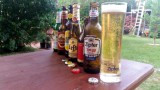 Tag des Bieres (International, Reinheitsgebot, Brausilvester)