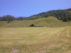 Wallehenhütte