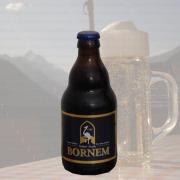 Produktfoto Bornem Dubbel (Bierflasche)