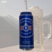 Produktfoto Puntigamer - das bierige Bier (Bierdose)